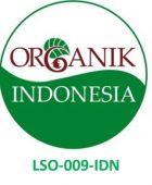 Logo Organik Indonesia ICERT