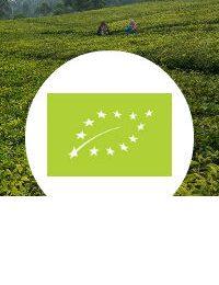 Organik Eropa Layanan